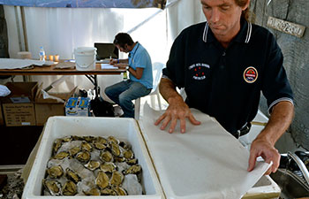 oyster-fest-3