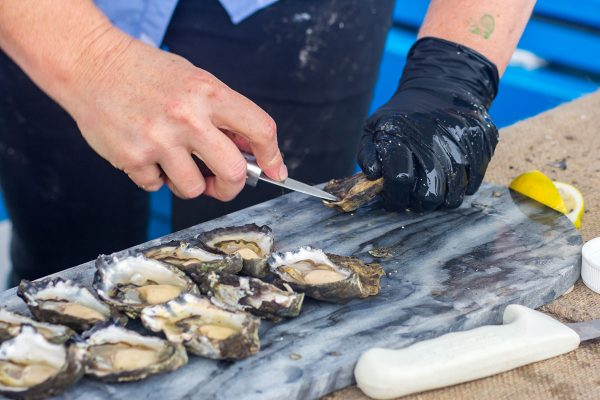 2017-narooma-oyster-festival-3