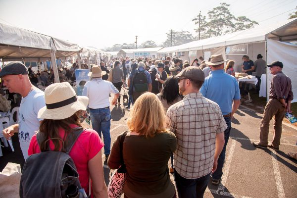 2018-narooma-oyster-festival-oyster-alley-6